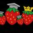 logo Aardbeienacademie